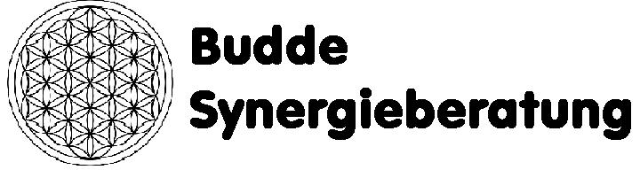 Budde Synergieberatung
